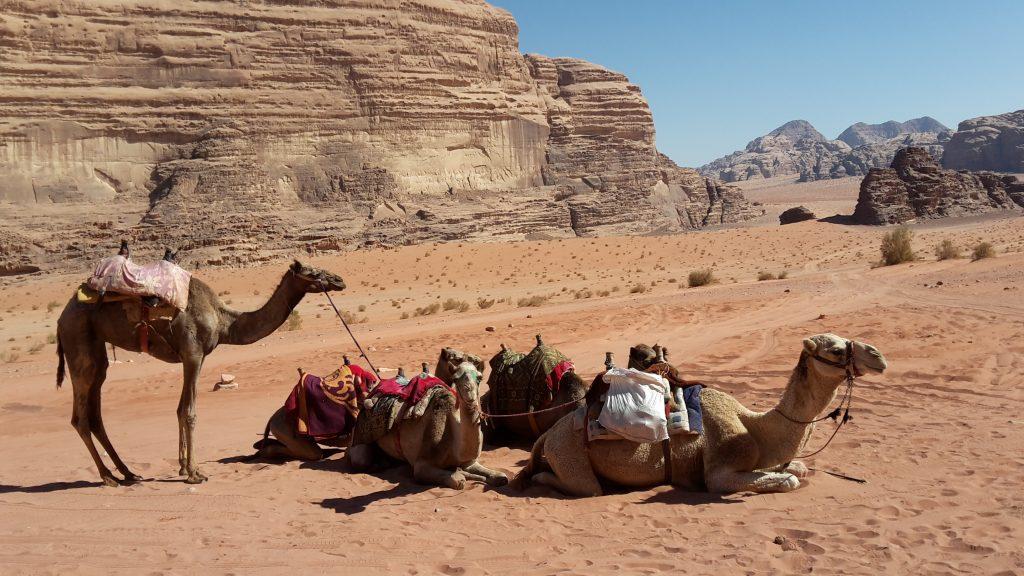 Wadi Rum. Giordania.